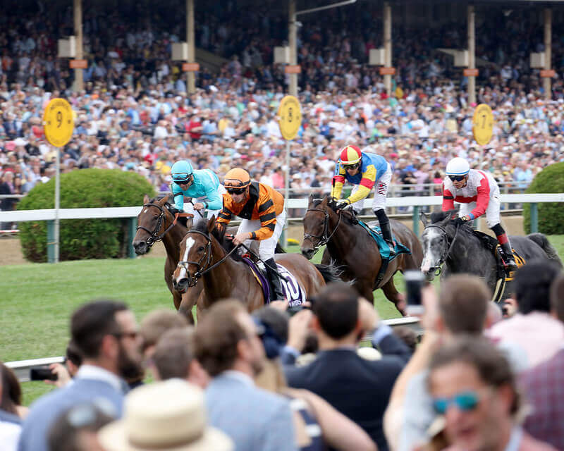 Preakness Stakes Live
