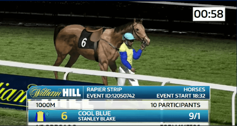 William hill Virtual horse racing betting