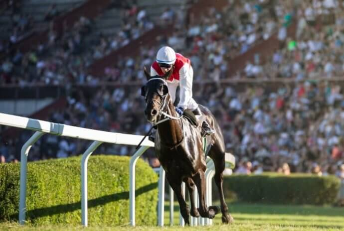 Each-way Betting on Horses