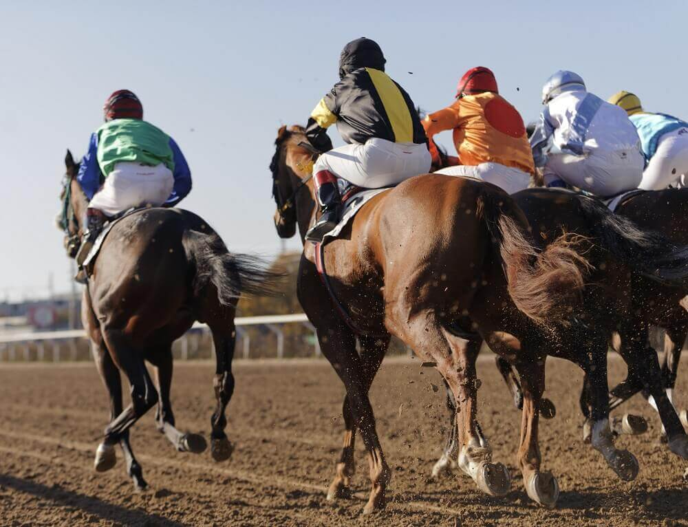 Horse Race Cards  – Explained