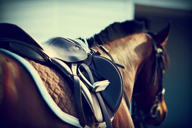 Hong Kong Horse Racing Tips