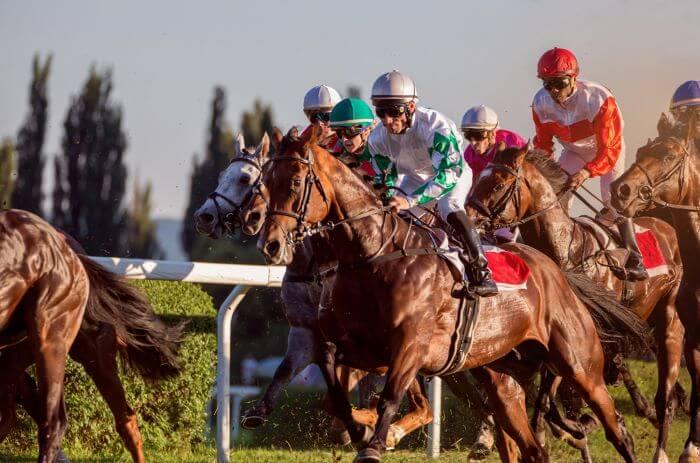 Japan Horse Racing Tips