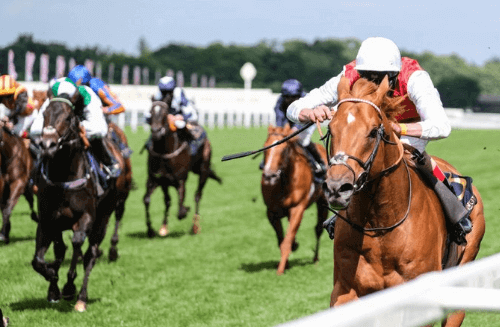 Royal Ascot Results Day 4 – Golden Horde Could be the Best Sprinter in Europe